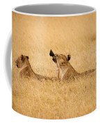 Hungry Lions Coffee Mug by Adam Romanowicz