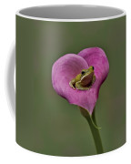Kermit Hangs Out Coffee Mug by Susan Candelario