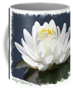 Large Water Lily With White Border Coffee Mug by Carol Groenen