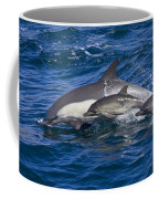 Long-beaked Common Dolphins, Delphinus Coffee Mug by Ralph Lee Hopkins
