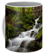Lush Stream Coffee Mug by Mike Reid