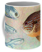 Mooneyes, Sunfish Coffee Mug by James W Johnson