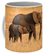 Mother And Baby Elephants Coffee Mug by Adam Romanowicz