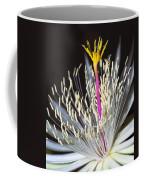 Night Time Celebration Coffee Mug by Kelley King