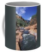 Oak Creek Flowing Through The Red Rocks Coffee Mug by Rich Reid