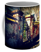 Old Iron Gate In Charleston Sc Coffee Mug by Susanne Van Hulst