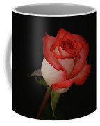 Orange And White Rose Coffee Mug by Sandy Keeton