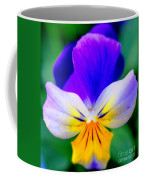 Pansy Coffee Mug by Kathleen Struckle