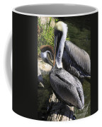 Pelican Duo Coffee Mug by Deborah Benoit