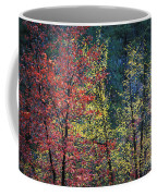 Red And Yellow Leaves Abstract Horizontal Number 1 Coffee Mug by Heather Kirk