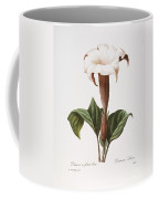 Redoute: Datura, 1833 Coffee Mug by Granger