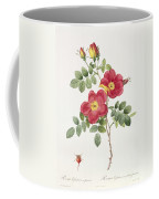 Rosa Eglantera Punicea Coffee Mug by Pierre Joseph Redoute