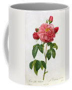 Rosa Gallica Aurelianensis Coffee Mug by Pierre Joseph Redoute