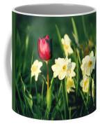 Royal Spring Coffee Mug by Steve Karol
