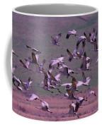 Sandhill Cranes  Coffee Mug by Jeff Swan