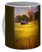 Shed In Sunlight Coffee Mug by Marilyn Hunt