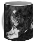 Shih Tzu Coffee Mug by Adam Romanowicz