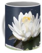 Sunlight On Water Lily Coffee Mug by Carol Groenen