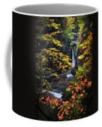 Surrounded By Fall Coffee Mug by Neil Shapiro