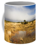 Tasmanian Storm  Coffee Mug by Mike  Dawson