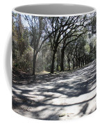 The Road Home Coffee Mug by Carol Groenen