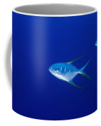 Two Pompano Fish And A Cleaner Fish Coffee Mug by James Forte