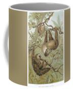 Two-toed Sloth Coffee Mug by Granger