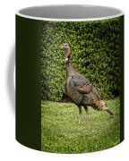 Wild Turkey Coffee Mug by Kelley King