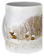 Winter Beauty Coffee Mug by Deborah Benoit