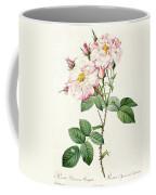 York And Lancaster Rose Coffee Mug by Pierre Joseph Redoute