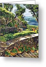 Garden Stairway Greeting Card by David Lloyd Glover
