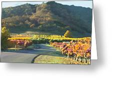 The Hills of Clos La Chance Winery Greeting Card by Artist and Photographer Laura Wrede