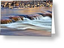 0331 Oak Creek Greeting Card by Steve Sturgill