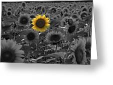 Alone Greeting Card by Andrea Galiffi