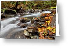 Around The Bend Greeting Card by Mike  Dawson