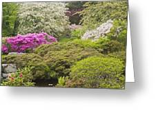 Asticou Azelea Garden - Northeast Harbor - Mount Desert Island - Maine Greeting Card by Keith Webber Jr