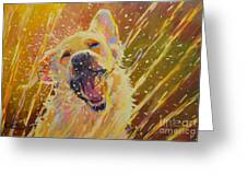 August Greeting Card by Kimberly Santini