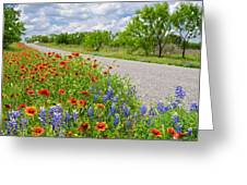 Backroad Beauty Greeting Card by Lynn Bauer