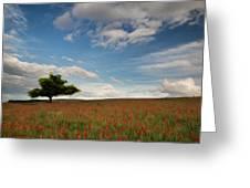 Beautiful Poppy Field Landscape Digital Painting Greeting Card by Matthew Gibson
