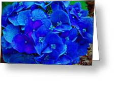 Blue Beauty Greeting Card by Annette Allman