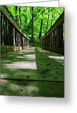 Bridge In The Woods Greeting Card by Andrew Martin