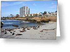Ca Beach - 121221 Greeting Card by DC Photographer