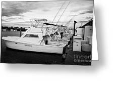 Charter Fishing Boats Charter Boat Row City Marina Key West Florida Usa Greeting Card by Joe Fox