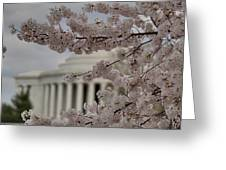 Cherry Blossoms With Jefferson Memorial - Washington Dc - 01134 Greeting Card by DC Photographer