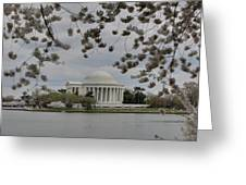 Cherry Blossoms With Jefferson Memorial - Washington Dc - 01137 Greeting Card by DC Photographer