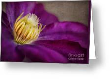Clematis Greeting Card by Elena Nosyreva