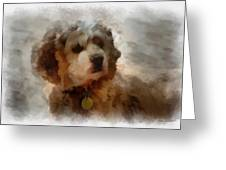 Cocker Spaniel Photo Art 01 Greeting Card by Thomas Woolworth