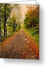 Country Lane Greeting Card by Adrian Evans