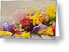 Dead Tulips Greeting Card by Svetlana Sewell