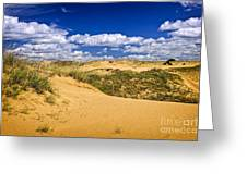 Desert Landscape In Manitoba Greeting Card by Elena Elisseeva